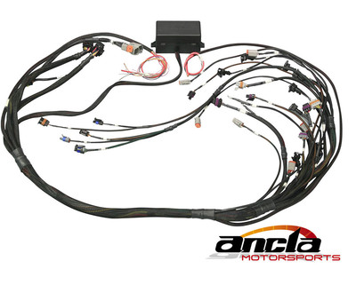Elite 2000/2500 GM GEN III LS1 & LS6 non DBW Terminated Harness